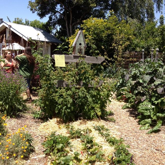 Earthly Art Farm. (photos by Betty Homer)