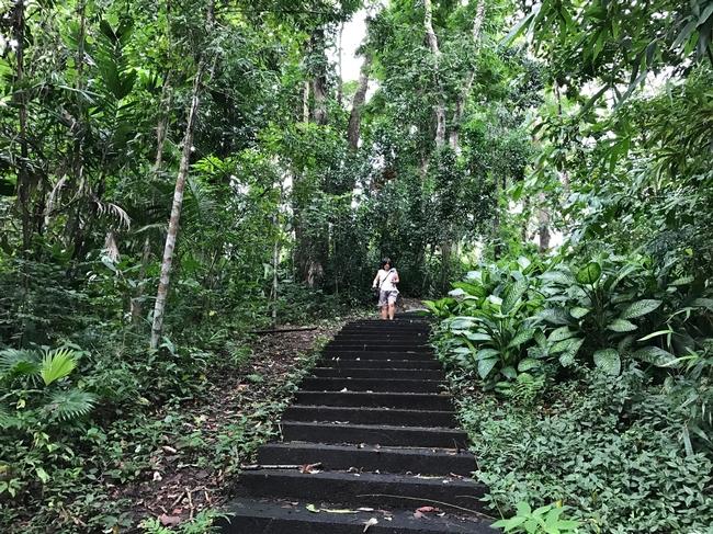 steps tina s 2017