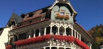 Germany St Blasien flowers. (photos by Karen Metz) for Under the Solano Sun Blog