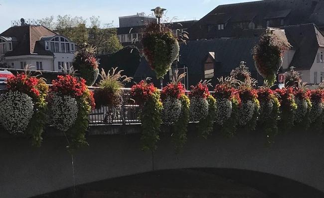 Tubingen Bridge Flowers