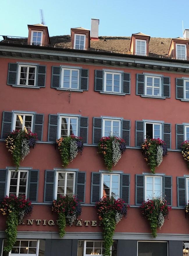 Tubingen Flowerboxes