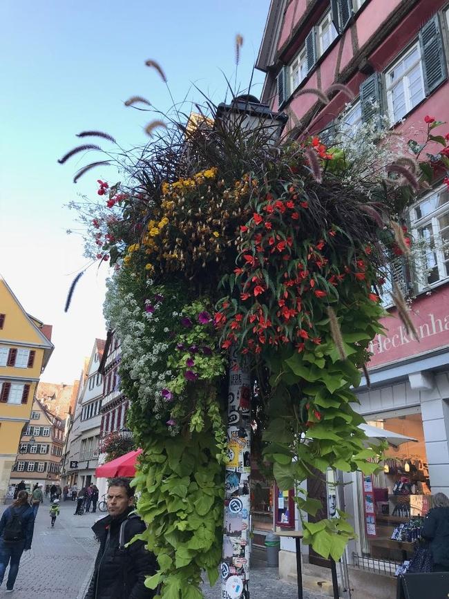 Tubingen Lamppost Flowers