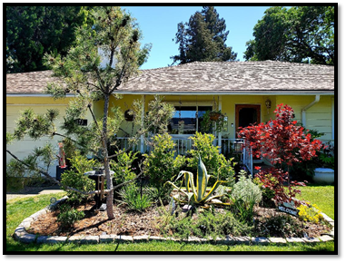 Our little piece of paradise – added a mix of CA native plants and noninvasive nonnatives to replace lawn.
