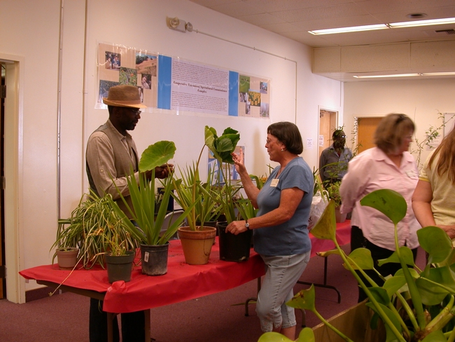 A man and woman talk about plants.