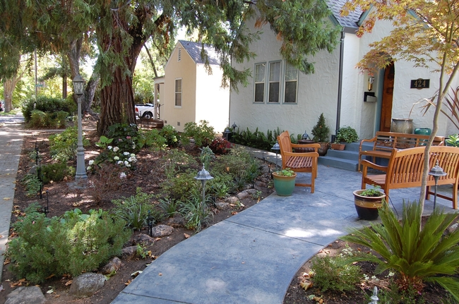 The homeowners obviously enjoy their shady, lawn-free front yard, located in downtown Vacaville.