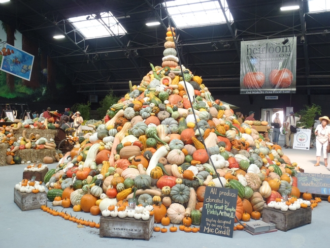 pyramid of various varieties of squash