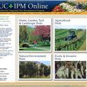 IPM Screenshot