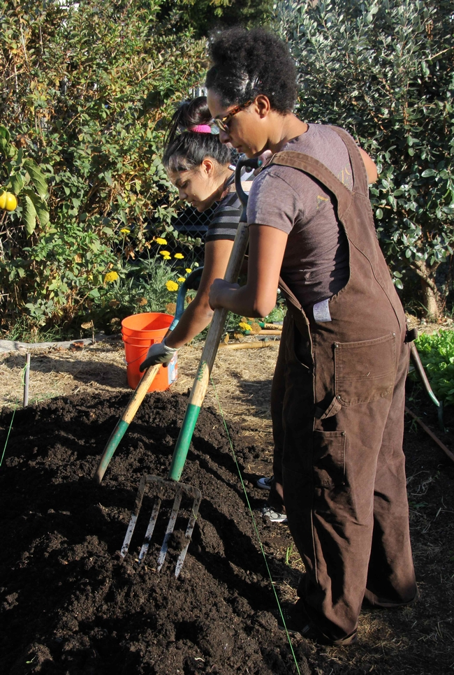 Students farming at WOW Farms, Oakland, CA