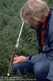 Sample soil or plant tissue to determine fertilizer needs.