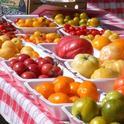 Una gran variedad de tomates pueden ser cultivados en el jardín.