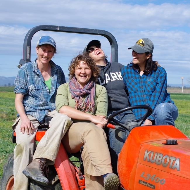 Emma Torbet, Sasha Klein, Aubrey White y Marisa Alcorta. (Fotografía por: Warren Jones).