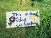 El Patio Escolar Comestible en Berkeley enseña destrezas de vida y apoya la enseñanza académica mediante clases en un aula conformada por un huerto orgánico y una cocina ubicada en un terreno de un acre.