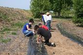 Un grupo de niños cultiva alimentos en el Jardín Botánico de Bravo Lake en Woodlake.