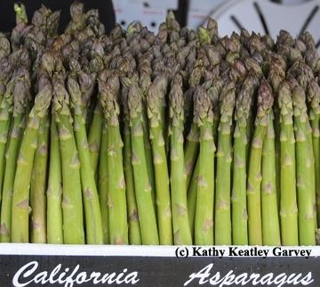 Los espárragos son parte de la dieta verde. También hay una variedad blanca. (Foto por Kathy Keatley Garvey)