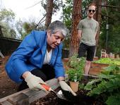 La Presidenta Napolitano trabaja en el huerto administrado por estudiantes de UCLA ante la mirada del estudiante Ian Davies.