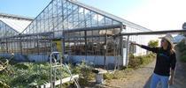 Pilar Rebar, granjera urbana, y el equipo de UC ANR recorriendo las instalaciones de su granja en Richmond, California. for Blog de Alimentos Blog