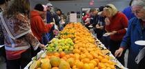 Cientos de frutas cítricas para ser probadas en el evento degustación del año pasado. for Blog de Alimentos Blog