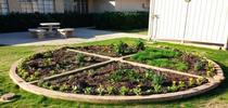 El huerto pizza que crece en el Centro de Investigación y Extensión del Desierto de la Universidad de California. for Blog de Alimentos Blog