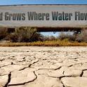 Photo CDFA Planting Seeds blog