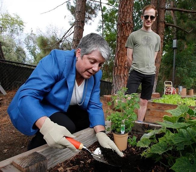 La presidenta Napolitano trabaja en un huerto durante el lanzamiento de la Iniciativa Alimentaria Global.