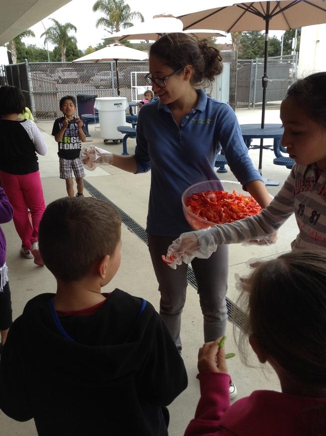 Un líder estudiantil y su asistente ayudan a repartir chiles morrones.