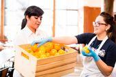 La Iniciativa Alimentaria Global ha unido a personas en nuevos esfuerzos colaborativos. Crédito: Elena Zhukova.