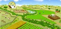 El entorno de una granja puede planearse tanto para la producción de frutas y verduras como para la conservación de la naturaleza. (Ilustración por Mattias Lanas y Joseph Burg). for Blog de Alimentos Blog