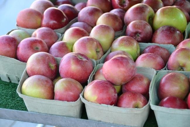 El otoño marca el auge de la temporada de manzanas en California. Con una gran abundancia de manzanas disponibles a un buen precio, es el momento perfecto para preservarlas.