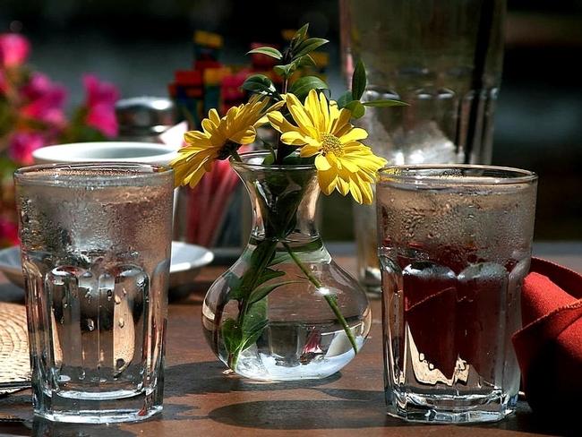 Las Pautas Alimentarias recomiendan a los estadounidenses que substituyan las bebidas azucaradas por agua. (Foto: public-domain-image.com)