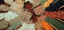 Las legumbres son cultivos de leguminosas cosechadas para granos secos como frijoles, lentejas y guisantes. for Blog de Alimentos Blog