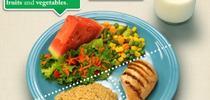 MiPlato for Blog de Alimentos Blog