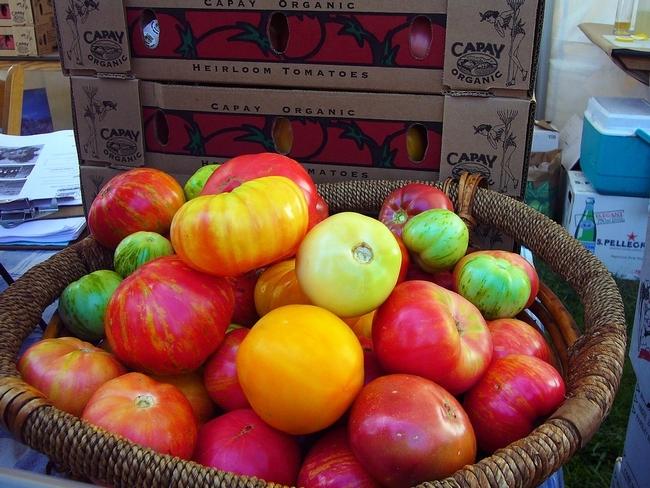 Los tomates heirloom son los favoritos de la granja al tenedor.
