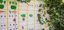 Al plantar su huerto de otoño, fíjese en las fechas de las primeras heladas para proteger su cosecha. (Fotografía: Melissa Womack). for Blog de Alimentos Blog