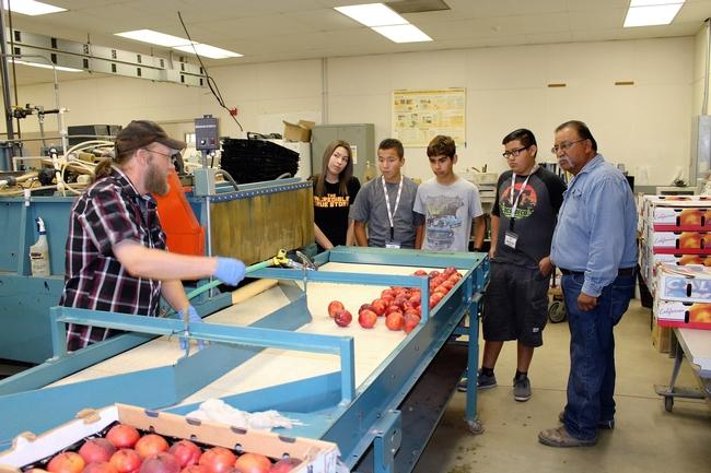 Los estudiantes aprenden acerca de la investigación post cosecha en el Centro de Investigación Agrícola y Extensión de Kearney.