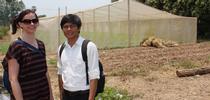 La investigadora de UC Davis, Karen LeGrand y Thort Chuong frente a otro vivero de malla en Camboya que fue construido después de haber ayudado a mostrar a científicos, granjeros y comerciantes las tecnologías del Laboratorio de Innovación Hortícola. for Blog de Alimentos Blog