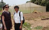 La investigadora de UC Davis, Karen LeGrand y Thort Chuong frente a otro vivero de malla en Camboya que fue construido después de haber ayudado a mostrar a científicos, granjeros y comerciantes las tecnologías del Laboratorio de Innovación Hortícola.