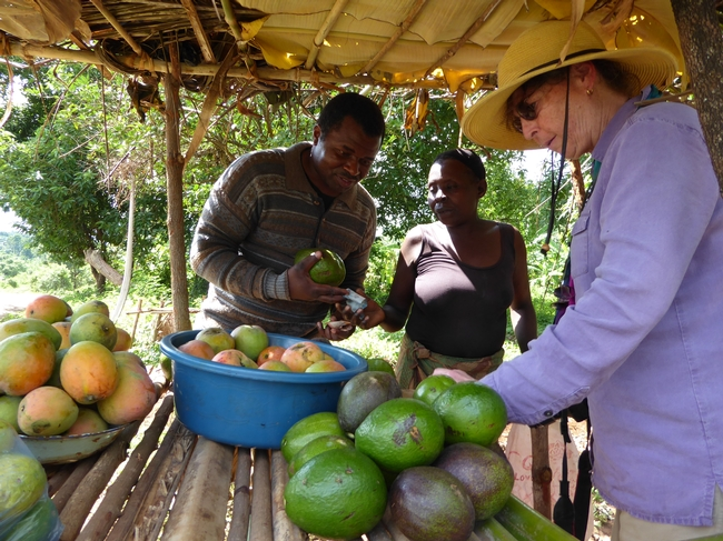 Mary Lu Arpaia inspecciona aguacates producidos localmente que se venden en un puesto a la orilla del camino. (Fotografía: Mark Hoddle)
