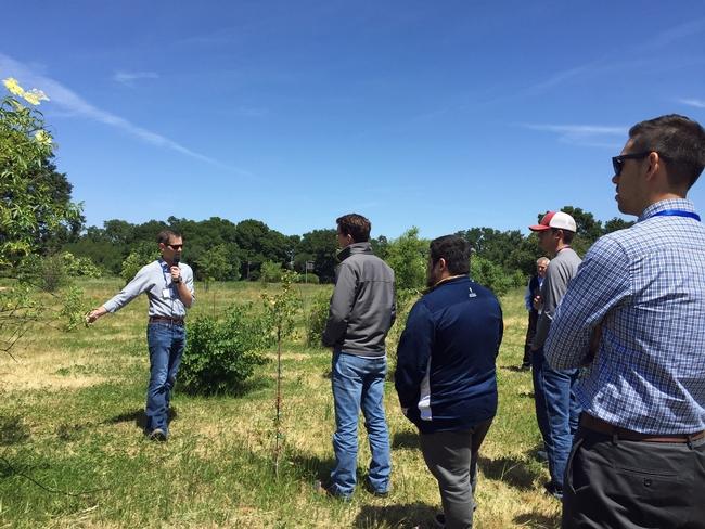 Aaron Lange (izquierda) explica que él plantó arbustos de baya del saúco para crear un hábitat para la amenazada carcoma de la baya del saúco del valle.