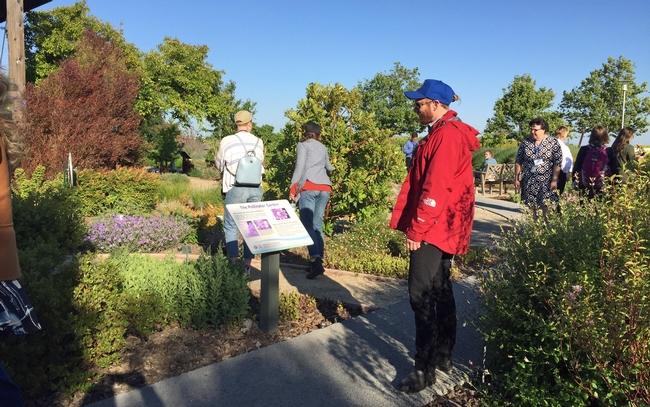 El graduado de la UC Berkeley, Sarick Matzen, lee sobre las coloridas plantas del jardín que atraen a las abejas, mariposas y otros polinizadores.