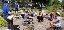 Los voluntarios en el huerto antes de la primera lección. El curso es impartido por Lisa Paniaqua (a la izquierda), coordinadora de sustentabilidad del huerto escolar de CalFresh de la UC en los condados de San Luis Obispo y Santa Bárbara. for Blog de Alimentos Blog