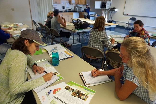 Trabajando en grupos de dos. Enfrente se encuentran estudiante de maestría en nutrición de CalPoly, Alyssa Friebert (izq) y la jardinera maestra de la UC, Jill Marie.