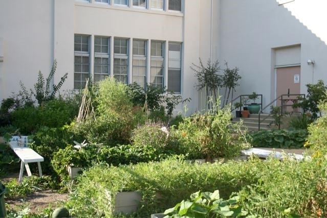 DESPUÉS: El Centro Carthay ahora utiliza su próspero huerto para impartir lecciones prácticas sobre jardinería y al aire libre. (Fotografía Louisa Cárdenas)