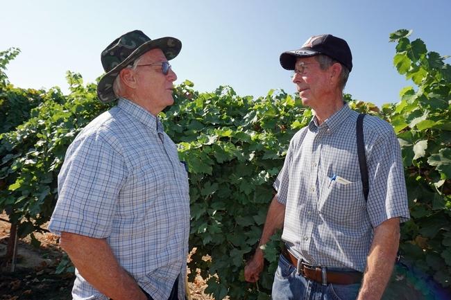 El asesor emérito de viticultura de UCCE, George Levitt (izquierda), hablanco con el productor jubilado de la USDA, David Ramming, durante el Día de la Uva 2017.