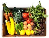 Muestra de una caja del programa Agricultura Apoyada por la Comunidad (CSA, por sus siglas en inglés). (Fotografía: Tanaka Farms)