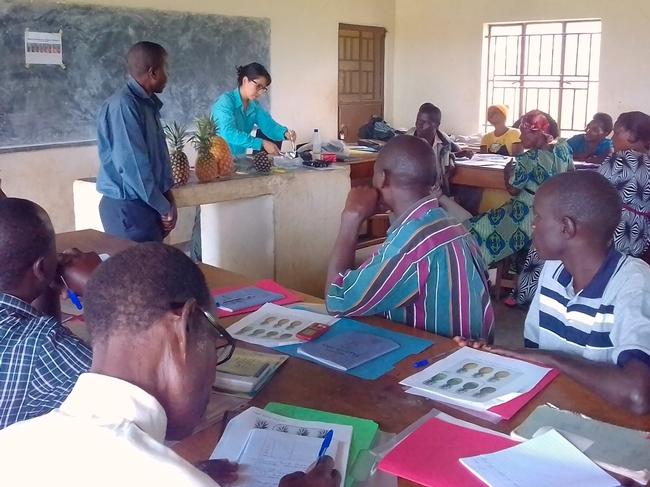 Karin Albornoz dirige un taller sobre el manejo post cosecha de la piña en Uganda.