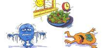 Zona de peligro: La bacteria crece rápidamente entre los 40 y 140 grados. for Blog de Alimentos Blog
