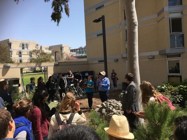 El Huerto de Ellie promueve el liderazgo entre los estudiantes de UCSD, quienes actúan como directores del huerto y educan a sus compañeros sobre jardinería y sustentabilidad.