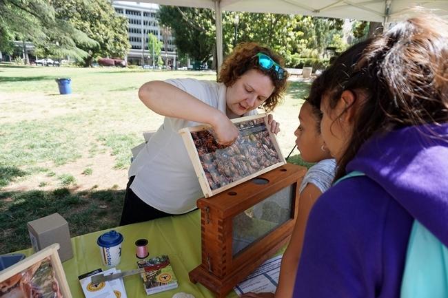 La especialista en apicultura Elina Niño, de Extensión Cooperativa de UC, comparte información con los estudiantes sobre la vida de las abejas durante el día de campo.