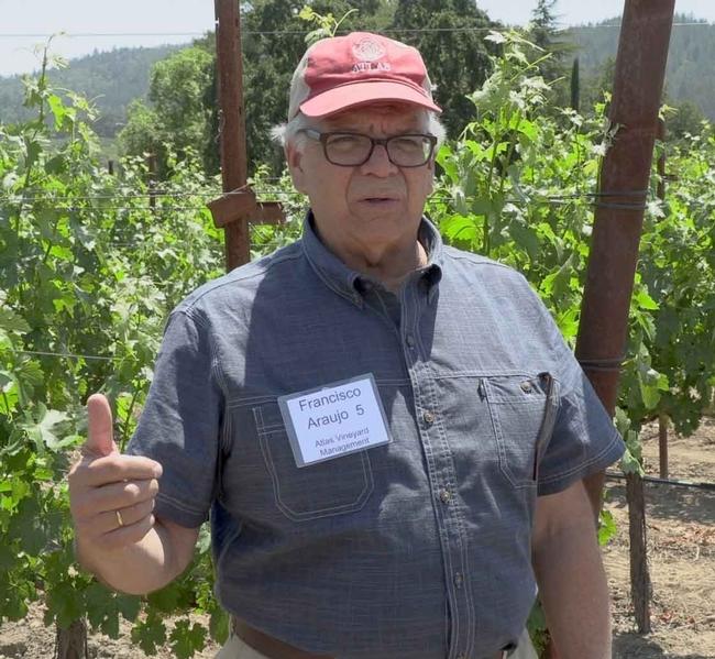 """El asesor en viticultura Francisco Araujo señaló que la industria vitivinícola depende de las investigaciones de UC """"Si encontramos formas de obtener una calidad máxima junto a niveles de producción eso pagará por el incremento en los costos de producción, es la única manera que podemos ser sustentables ahora y en el futuro""""."""
