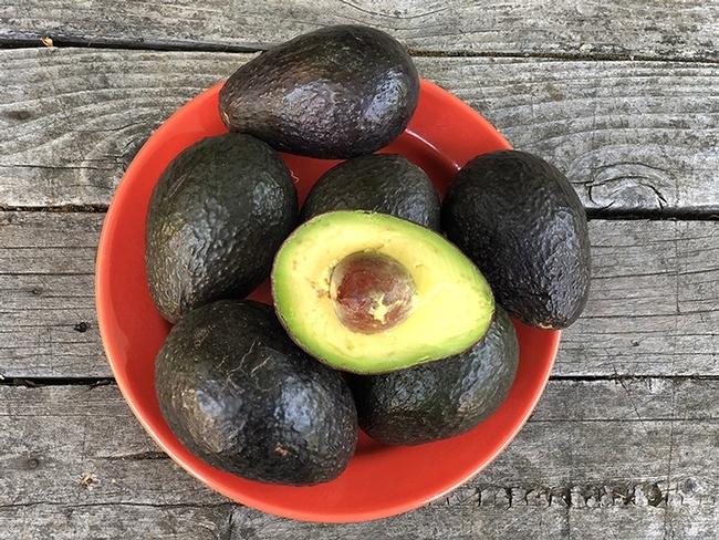El aguacate, que con frecuencia se cree que es una verdura, es en realidad una fruta y tiene un alto contenido de potasio. (Fotografía por Kathy Keatley Garvey)